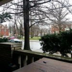 View from Dave's porch in Lexington, KY